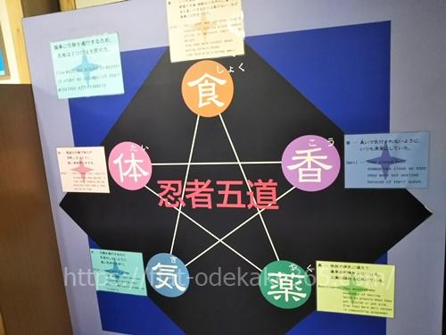 伊賀流忍者博物館のみどころはココ!人気のショーやからくり屋敷に行ってきた感想!