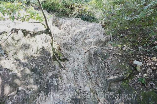 金華山の瞑想の小道の写真
