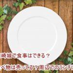 岡崎城で食事はできる?食べ物は売ってる?周辺でのランチは?
