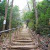 東谷山フルーツパークでハイキング 散策路を登って展望台まで行ってみた感想