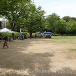 浜松城公園の紅葉の情報まとめ 見頃の状況やライトアップなどご紹介