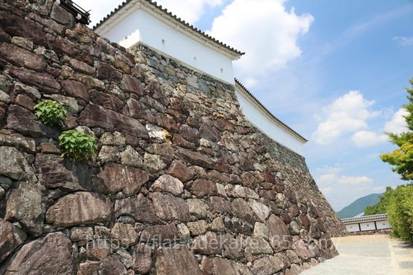 福知山城の石垣