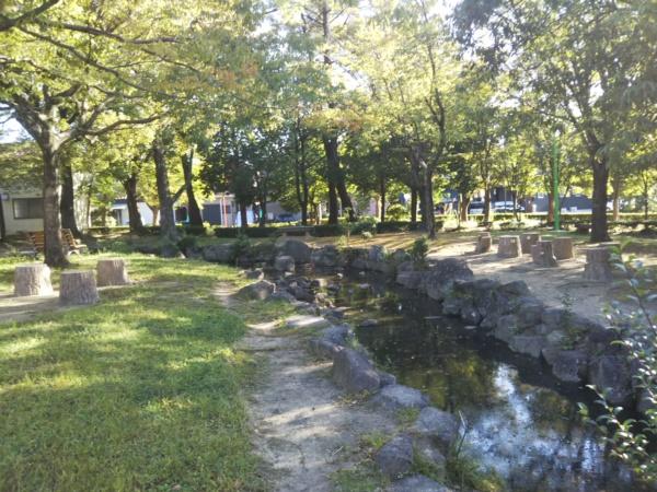 中部公園の小川